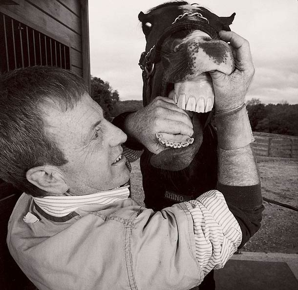 Dentiste pour cheval © Nancy Rica Schiff. Tous les droits réservés.