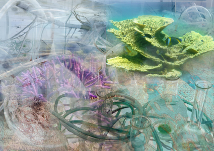 Laurence Janet. Deep Breathing / Resuscitation for the reef (détail projet / project details vue d'ensemble / Overview), 2015 Technique mixte / Mixed Media 410 x 350 x 150 cm Copyright Janet Laurence & artists 4 paris climate 2015