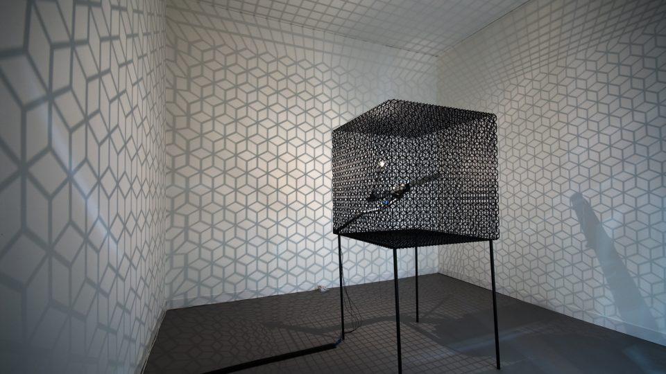 Laboratoires de l'art, un espace d'échange artistique et scientifique