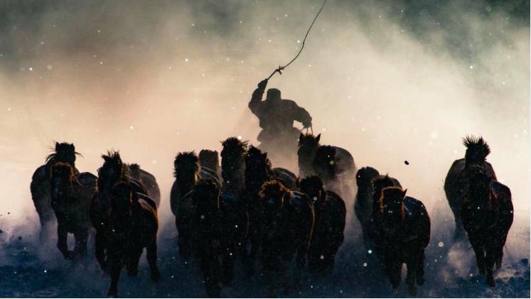 """Grand prix, catégorie """"gens"""" © Anthony Lau L'hiver est impitoyable en Mongolie intérieure. Avec une température de -20°C et des chutes de neige permanentes, j'ai eu des difficultés à me convaincre de sortir de la voiture pour prendre des photos. Mais quand j'ai vu ce cavalier diriger son destrier de cette manière, j'ai rapidement saisi mon téléobjectif."""