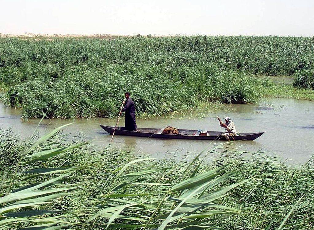 Les Ahwar du sud de l'Irak (Irak)