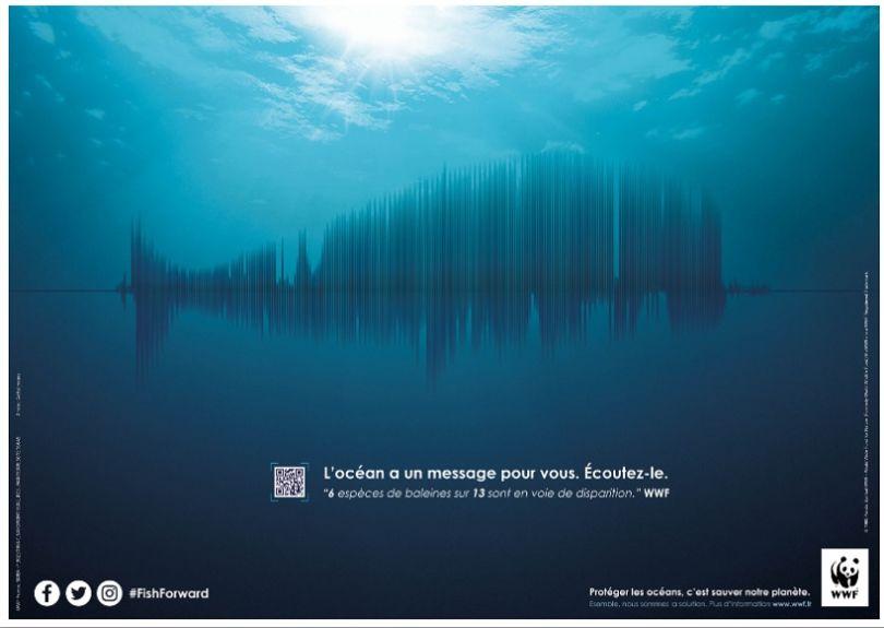 Le Message des cétacés. (© Tarek ElKhatib et Victor Soulez Lariviere)